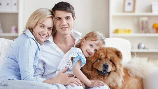 Wills & Trusts dog-young-family Direct Wills Liss